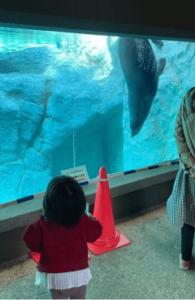 よこはま動物園ズーラシア 社員Blog